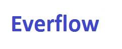 Everflow CPU Cooling Fan