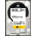 """Western Digital WD2503ABYZ 250GB 7200 RPM 64MB Cache Sata 3.5"""" Harddisk"""